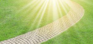Chemin pavé sous le soleil